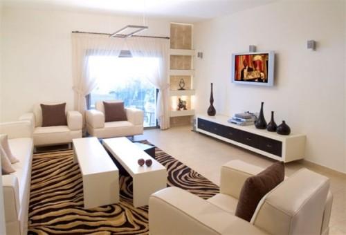 sala moderna cebra