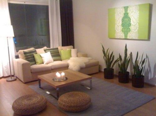 salas-decoradas-con-plantas-4