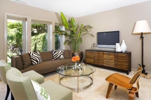 salas-decoradas-con-plantas-5